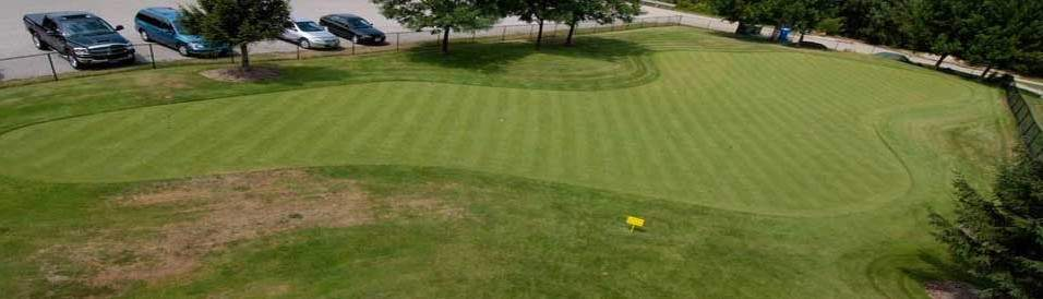 aerial shot putting green
